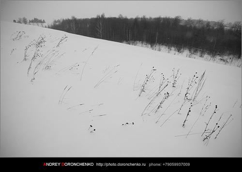 Фотограф Доронченко Андрей, Новокузнецк: Зимние пейзажи.