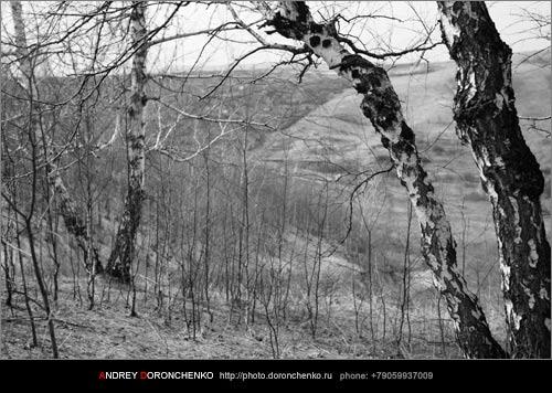 Фотограф Доронченко Андрей, Новокузнецк.