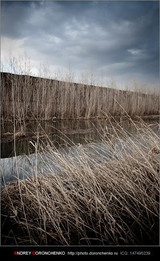 Фотограф Доронченко Андрей, Новокузнецк: ранняя весна.